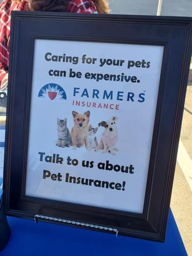 Gallery Image Pet_insurance.jpg