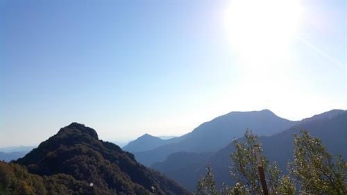California - Sequoia National