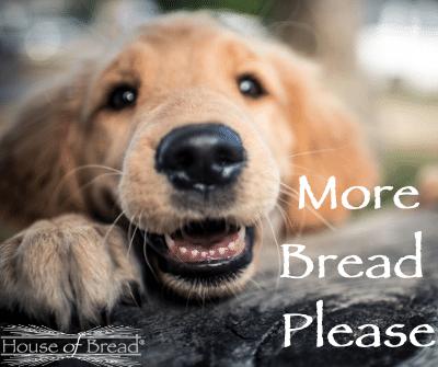 More Bread Please!!!