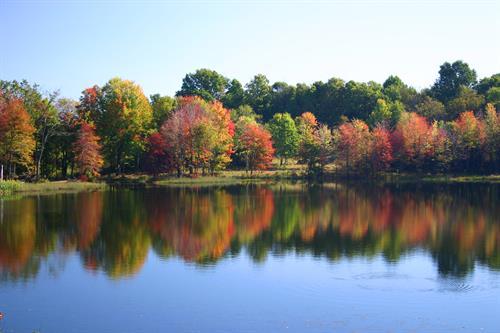 Gallery Image Autumn_Pond.jpg