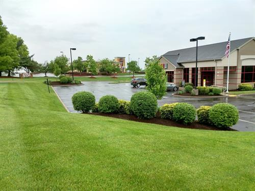 Gallery Image Commercial_Lawncare_3.jpg