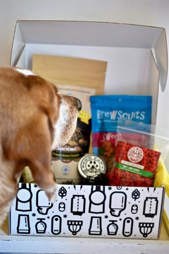 Just Launched our Pet Brew Box Delicious treats made from small breweries