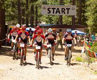 Mountain bike riding & racing in summer