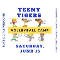 Teeny Tigers Volleyball Camp