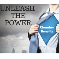 Unleash the Power of Your Chamber Benefits