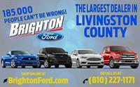 Get On Board With Brighton Ford!