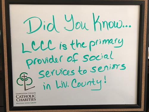 LCCC is the primary provider of senior services in Livingston County.