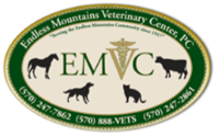 Endless Mountains Veterinary Center, PC - Owego
