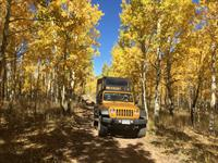 Fall colors in Cripple Creek on the Gold Belt Tour.