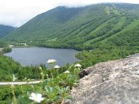 Franconia Notch Vacations - at Artist's Bluff. This could be Your Fantasy!