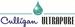 Driessen Water, Inc.
