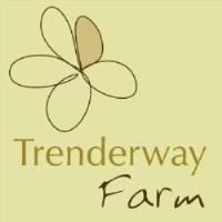 March 2020 Connected Lunch @ Trenderway Farm