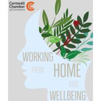 Working from home and wellbeing - Online Webinar