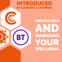Introduced by Cornwall Chamber: Mindfulness and managing your wellbeing