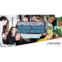 Apprenticeships: Lockdown, Furlough, Recovery and Brexit