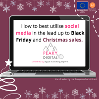 How to best utilise social media in the lead up to Black Friday and Christmas sales. Delivered by digital marketing experts, Peaky Digital Ltd.