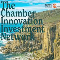 The Chamber Innovation Investment Network