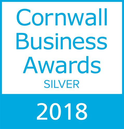 Business innovation of the year - Silver 2018