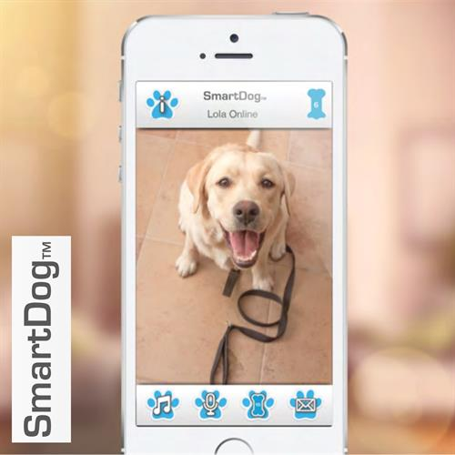 SmartDog is a wire free, rechargeable device, incorporating web cam, speaker, motion sensor and dog treat dispenser.
