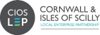 Cornwall and Isle of Scilly Mid Life MOT Project