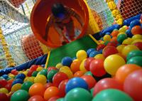 Gallery Image Families_Images_0001_jungle_tumble.jpg