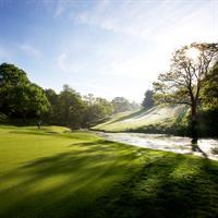 Gallery Image golf-hole.jpg