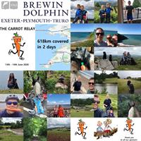 Brewin Dolphin carry a carrot for charity
