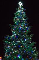 An extraordinary Camborne Christmas