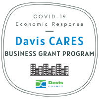 Davis CARES Grant Program Overview Webinar
