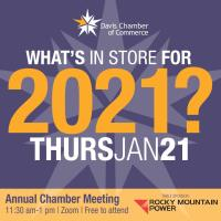 Online Chamber Luncheon - Annual Meeting