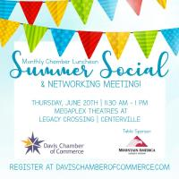 Summer Social & Networking Luncheon