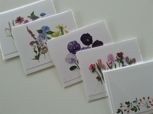 Gallery Image botanicalcards39.jpg
