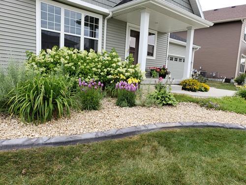 Landscape concrete edging, rock and plantings