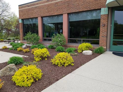 Mulch, plantings