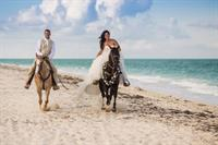 World Center Equestrian riding the beach on their wedding day, horses breathing great