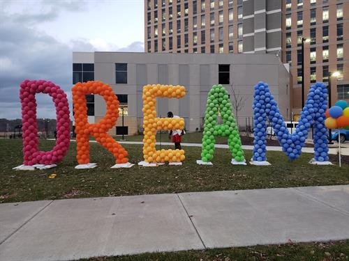 Large DREAM display