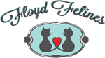 Floyd Felines & Friends