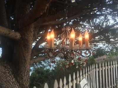 Chandeliers look so good hanging from trees!
