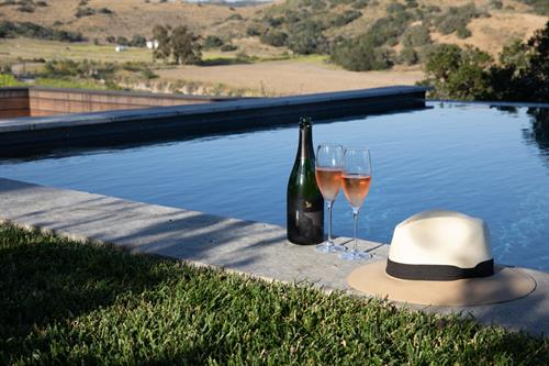 Gallery Image Hat_pool_and_wine.jpg