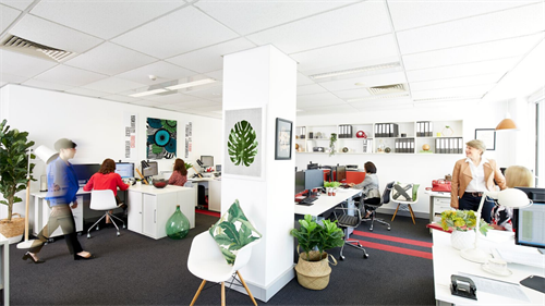 Numeric Eight Office, St Leonards