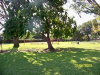 Halecrest Park, Inc.