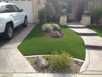 Tough Turtle Turf Artificial Grass