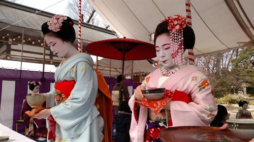 Authentic tea ceremony with Maiko in Kyoto
