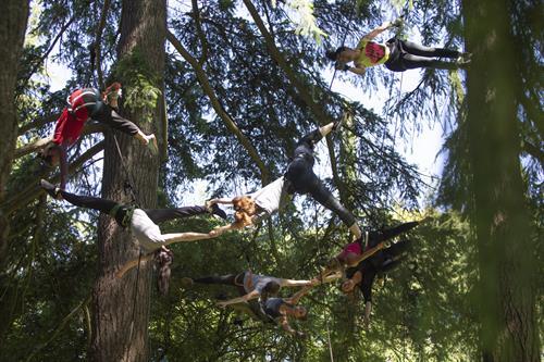 Aeriosa Tree Workshop Participants photo by Tim Matheson