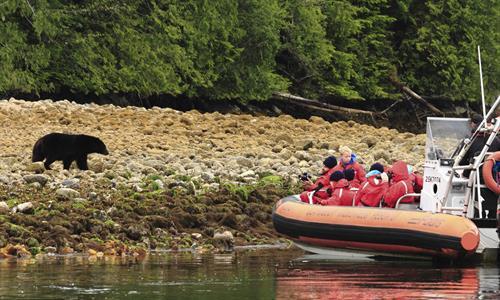Gallery Image Clayoquot_Wilderness_Resort_Bear_Watching_Zodiac.jpg