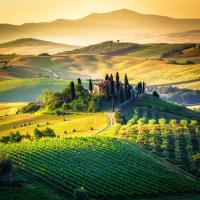 Chamber Discoveries Tuscany Information Session