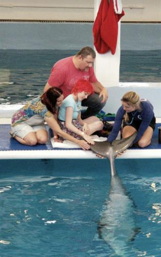 """I wish to meet""...Winter the Dolphin!"