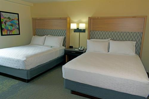 2 Queen Beds (Newly Renovated May 2020 )