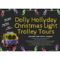 Dolly Hollyday Christmas Light Trolley Tours