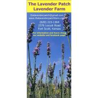 The Lavender Patch Farm ~ Day & Evening Lavender Time